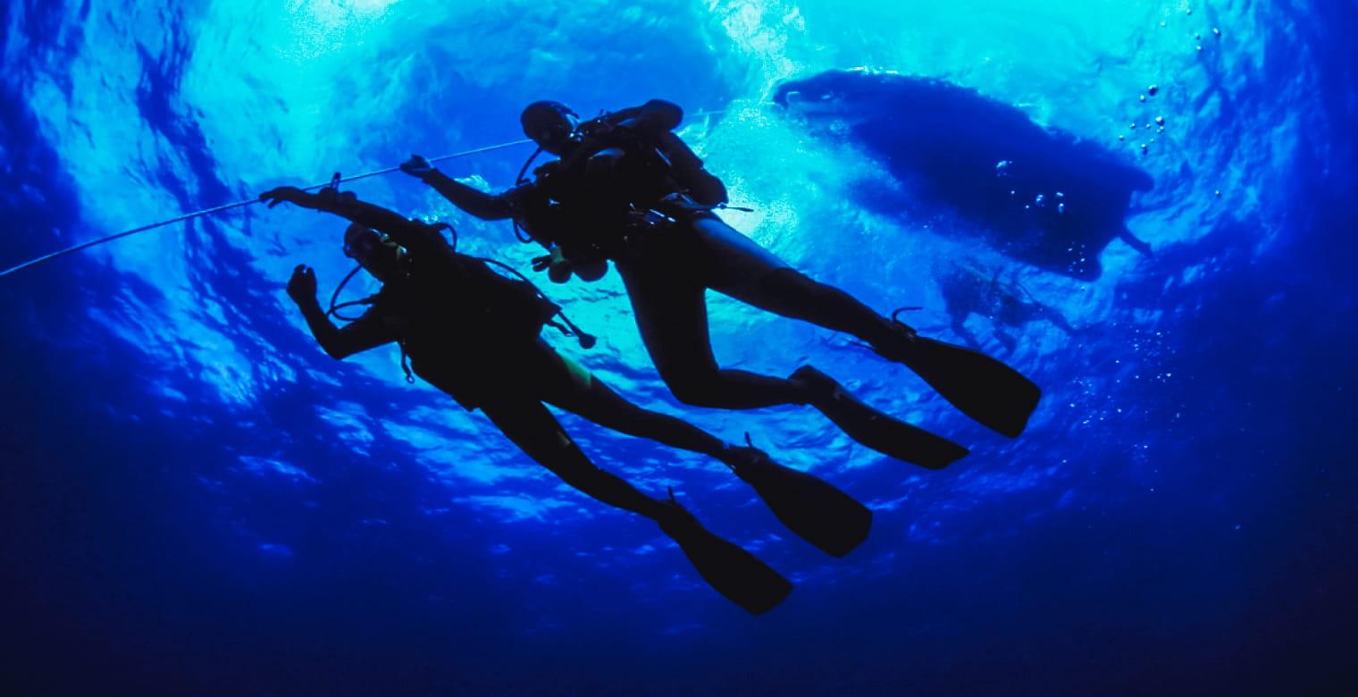 Plongé sous marine