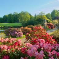 Parc botanique de Haute Bretagne  (3)