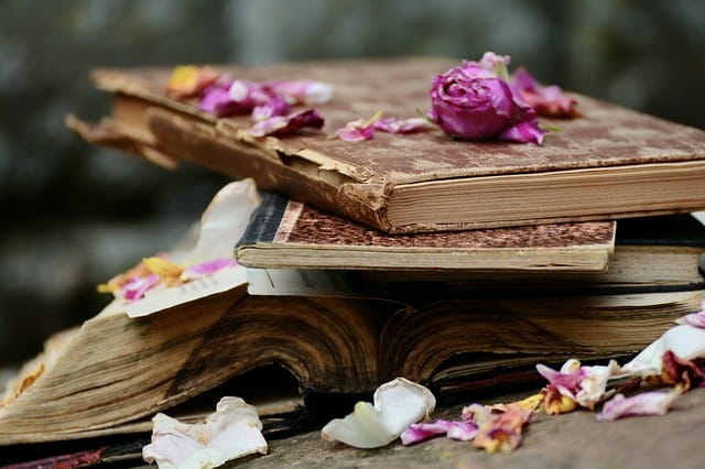 Livres---Pixabay-7
