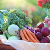 fruits_legumes_hillion