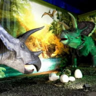 expo dinosaures 26 avril au 13 mai quévert©damien gouvier
