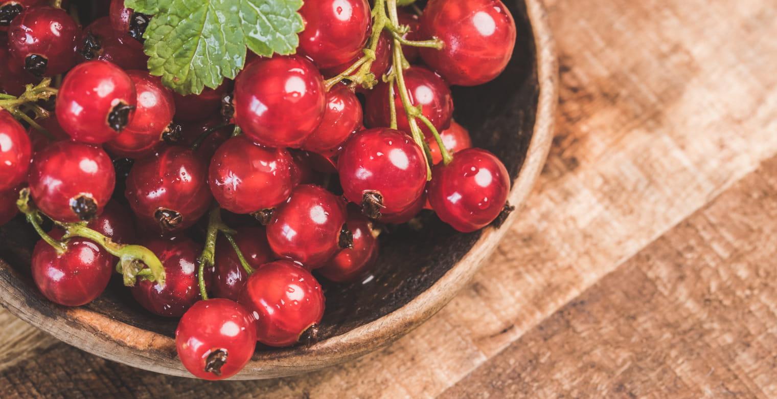 fruitsrouges_ferme_ploufragan