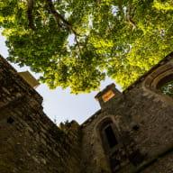 L'Oeil de Paco - Abbaye de Beauport 2020 (35)
