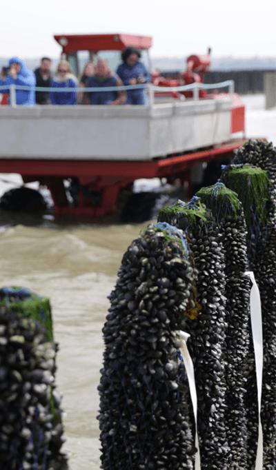 Pescatourisme---Planguenoual