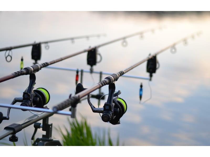 fishing-3302535-1920-2