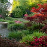 Jardins du Soleil Levant - Parc Botanique de Haute Bretagne