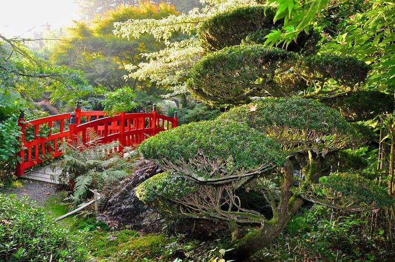 Pont rouge au jardins du Soleil Levant - Parc Botanique de Haute Bretagne