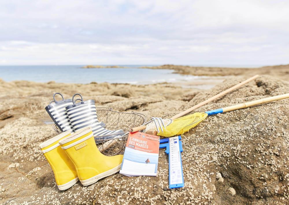 St-Jacut de la mer Initiation pêche à pied aux Ebihens © Alexandre Lamoureux (2)