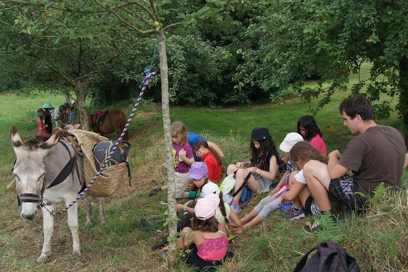 balade Bois du Barde 3