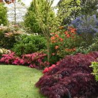 Visuel jardin du grand clos Le Foeil