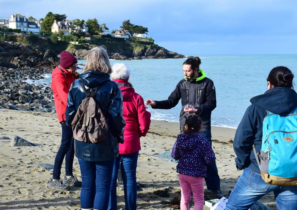 z-ecos-nature-laisse-de-mer-florian--62-modifs-web-