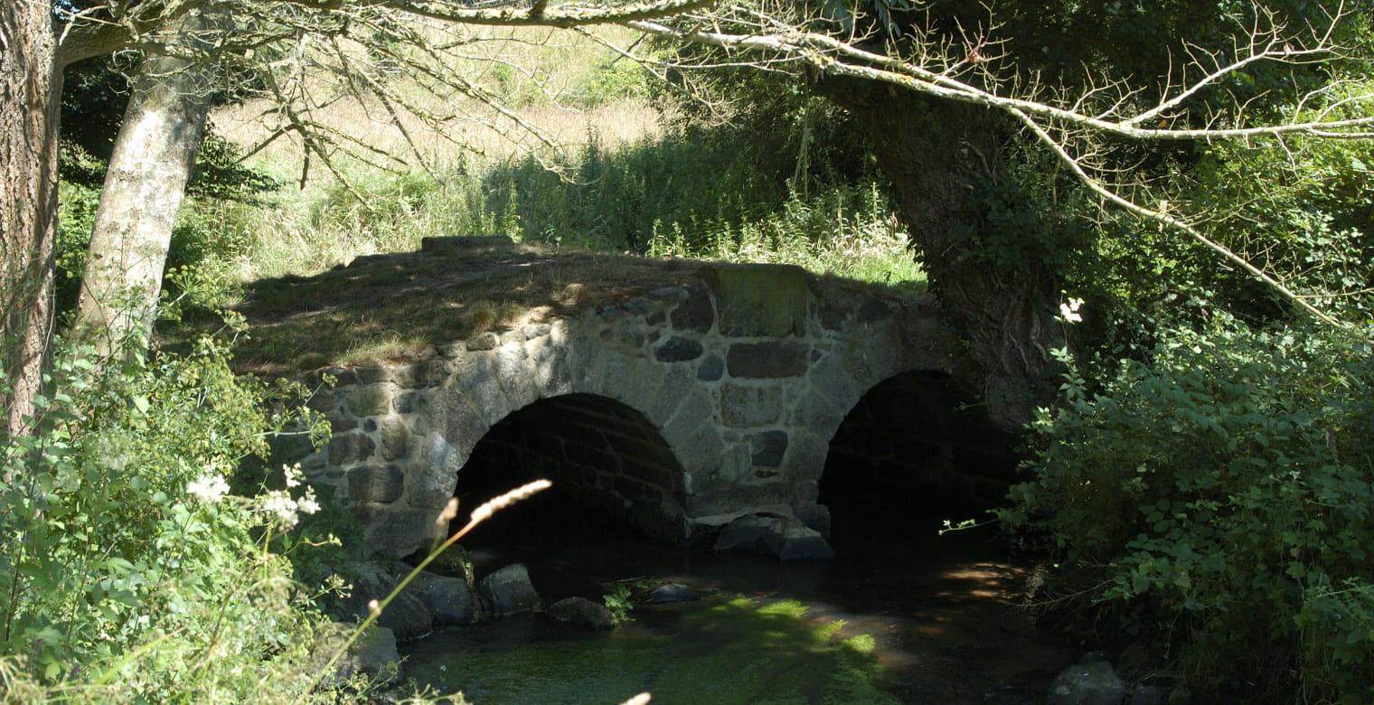 bois-de-pledran-B-Todesco_012
