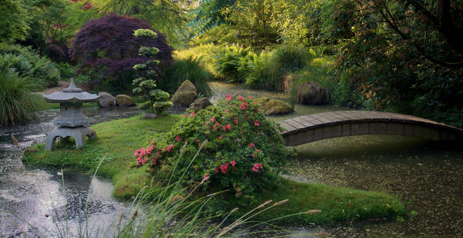 Parc botanique de Haute Bretagne  (1)