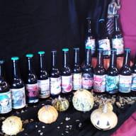 brasserie_la_guernouillette_saint-brieuc_bières_2