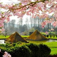Pyramides végétales - Parc Botanique de Haute Bretagne