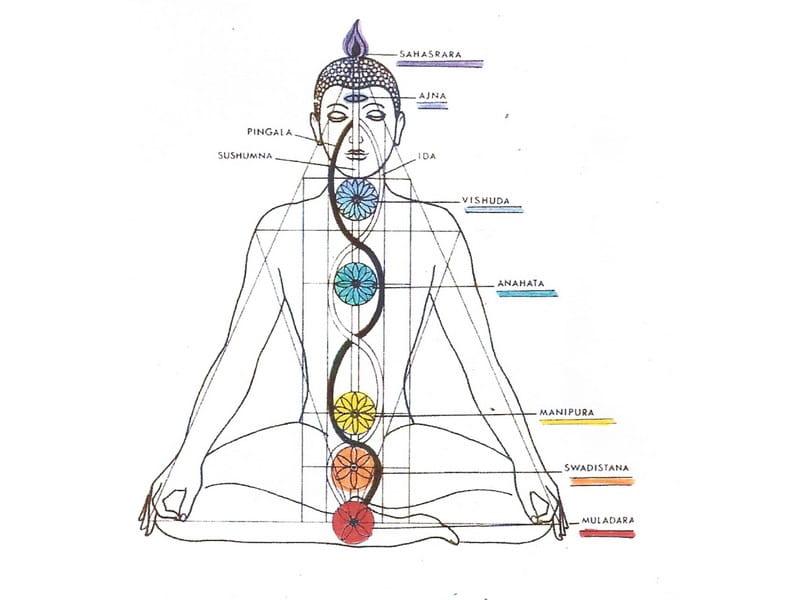 Conférence sur les Yogas à la Maison des Sources