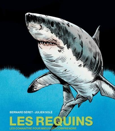 Les-requins-406x460