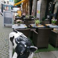 bar_restaurant_le_nelson_saint-brieuc_photo_terrasse